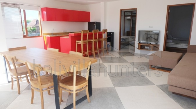 Brand New 2 Bedrooms Apartment in Canggu