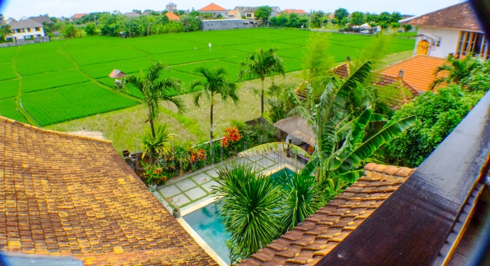 Beautiful 3 Bedrooms Villa in Canggu